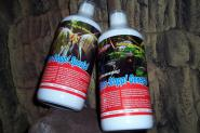 Femanga Algen Stop Spezial/General Bundle Algenvernichter