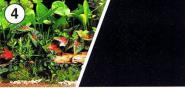 Aquarienrückwand Grüne Pflanzen 120x45cm Fotorückwand